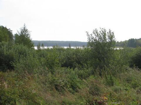 Участок ИЖС 15 соток на озере Гусиное в поселке Приладожское - Фото 4
