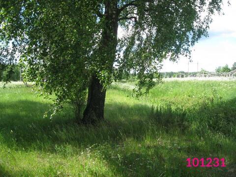 Продажа земельного участка, Надмошье, Дмитровский район, Деревня . - Фото 3