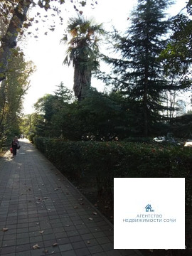 Краснодарский край, Сочи, улица Конституции СССР,36