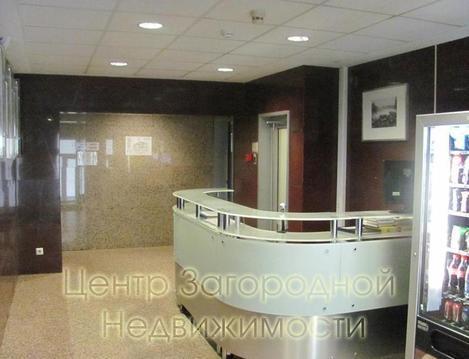 Аренда офиса в Москве, Тверская Пушкинская Чеховская, 208 кв.м, класс . - Фото 2