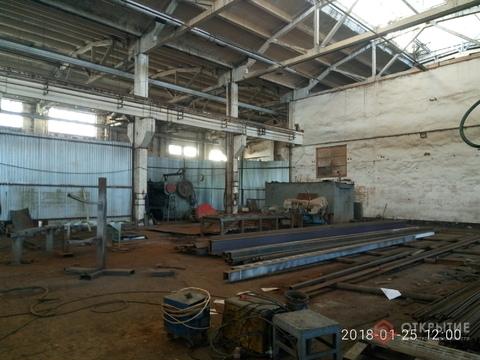 Производственное помещение (1000кв.м, 2 кран-балки по 5т) - Фото 2