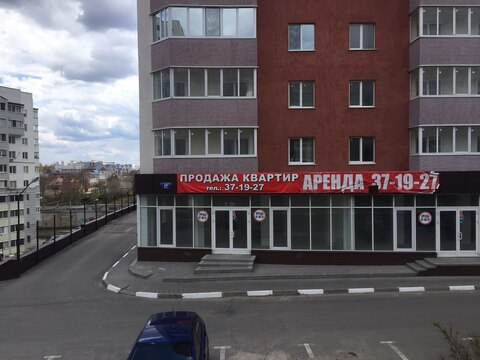 Объявление №48228384: Помещение в аренду. Белгород, ул. Губкина, 17И,