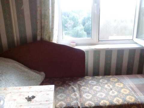 Сдам одно комнатную квартиру в Cходне - Фото 1