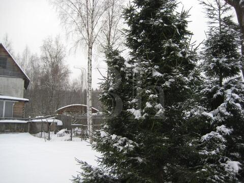 Продается просторный дом в лесу в окружении елей и сосен в камерном . - Фото 5
