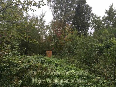 Участок, Ярославское ш, Щелковское ш, 17 км от МКАД, Загорянский пгт. . - Фото 5