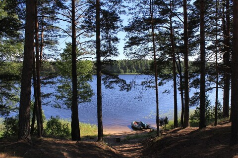Участок на первой линии озера - Фото 5