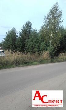 Участок в селе Чертовицы - Фото 5