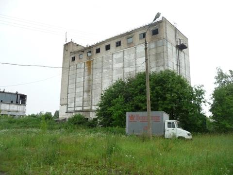 Продажа птицефабрики 152 га - Фото 5