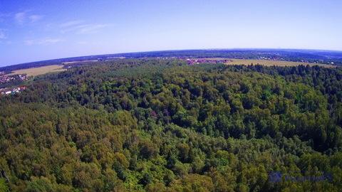 Продается земельный участок 20 соток (ИЖС) в д. Павловское - Фото 4