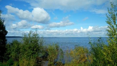 База отдыха у воды, охота , рыбалка, досуг, грибы, ягоды. - Фото 5