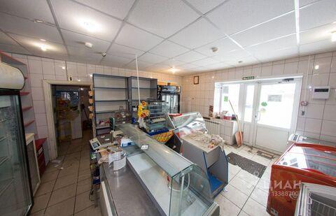 Торговая площадь в Курганская область, Шадринск ул. Анисимова, 48 . - Фото 2