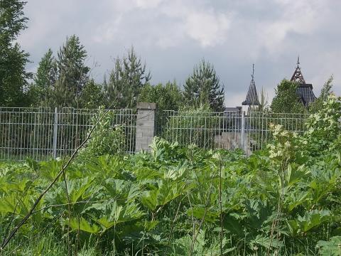 Продам земельный участок в д.Павловское Истринского р-на Московской об - Фото 4