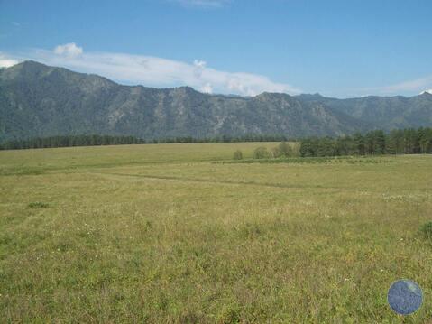 Продажа участка, Чемал, Чемальский район, Барантал - Фото 3