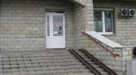 Сдам торговое помещение 171 кв.м, м. Старая деревня - Фото 2