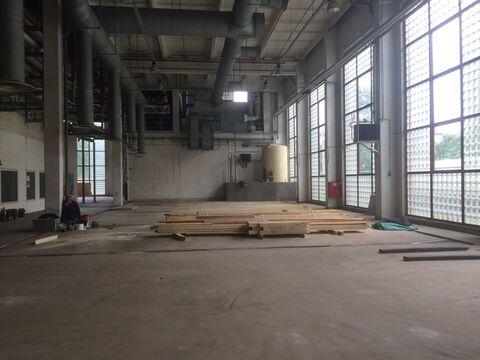 Склад-производство 976 м2 , 1 этаж, Невский район - Фото 3