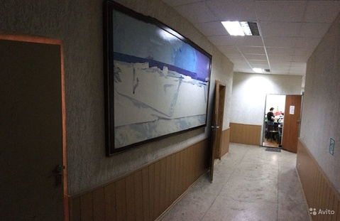 Офисное помещение, 240 м - Фото 4