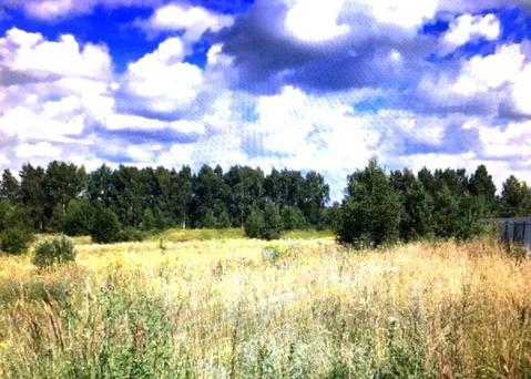 Продается земельный участок, Большое Петровское, 30 сот - Фото 4