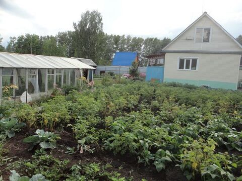 Продажа дачи, Березово, Кемеровский район - Фото 4