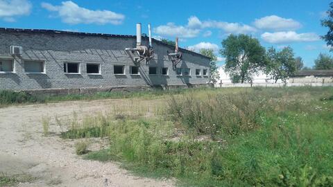 Продам производственное здание г. Сморгонь, Республика Беларусь - Фото 4