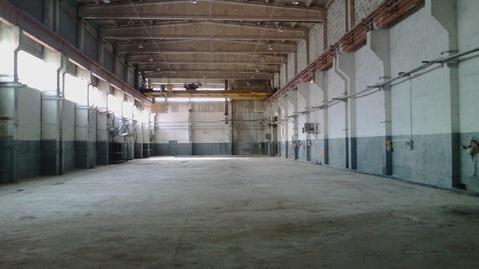 Сдам производственное помещение 1400 кв.м. - Фото 3