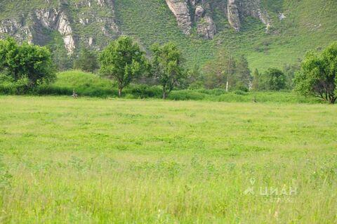 Продажа участка, Анос, Чемальский район - Фото 2