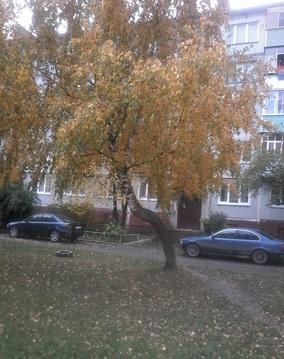 Квартира на Ольговке - Фото 1