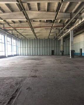 Сдам складское помещение 1684 кв.м, м. Проспект Ветеранов - Фото 2
