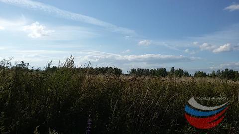 Участок 15 сот в Александрове - Фото 2