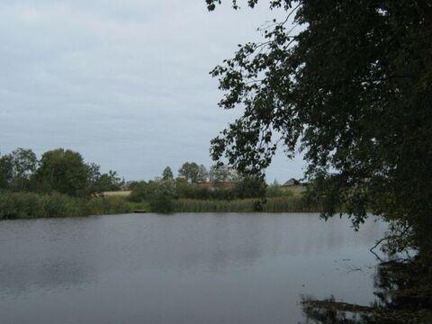 Экология национального парка Завидово - более 7 Га земли для фермеров! - Фото 5