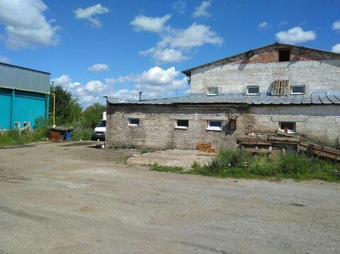 Продается мясокомбинат, 1000 кв.м, Клубная - Фото 3