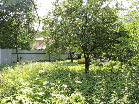 Продам земельный участок 7 соток в г.Мытищи, поселок Дружба - Фото 5