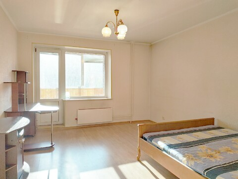 Продается однокомнатная квартира в Дзержинском - Фото 2