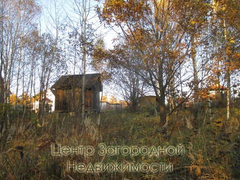 Участок, Ярославское ш, 41 км от МКАД, Никулино д. (Пушкинский р-н). . - Фото 5