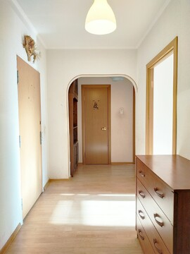 Продается однокомнатная квартира в Дзержинском - Фото 4