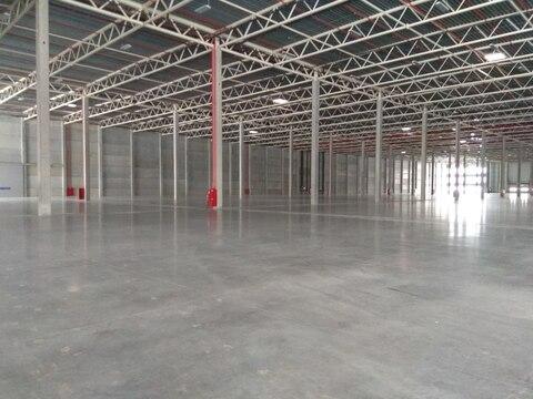 Складской комплекс 5300 кв.м, стеллажи, вытяжка - Фото 1