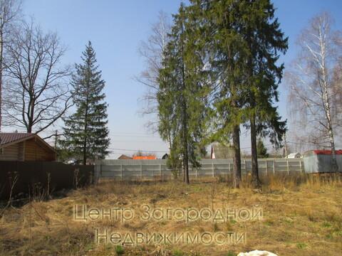 Участок, Ярославское ш, 29 км от МКАД, Лесной п. Ярославское шоссе, 29 . - Фото 2