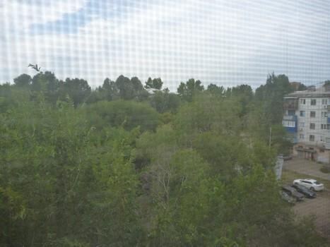 1-к квартира в Куйбышевском районе Самара. Остановка Гастрон - Фото 4