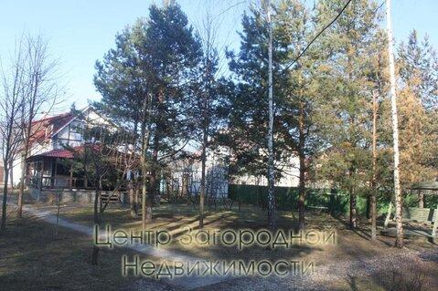 Участок, Новорижское ш, Волоколамское ш, 30 км от МКАД, Борки д. . - Фото 5