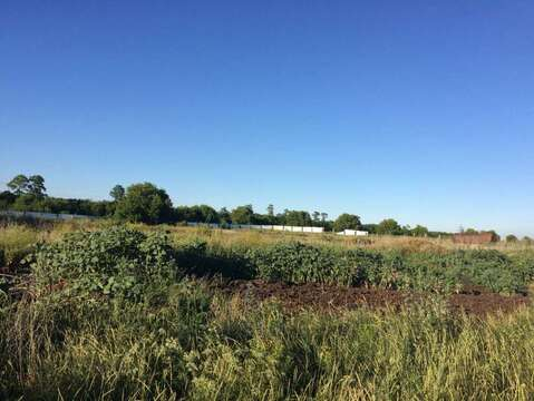 Продажа земельного участка, Песчанка, Старооскольский район - Фото 3