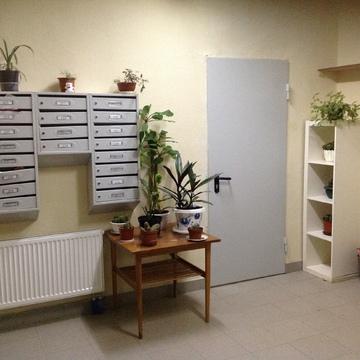 Отличная квартира в ЖК Супонево - Фото 3