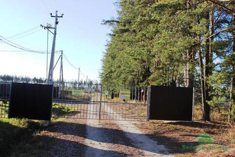 Дачный участок в окружении леса, недалеко от реки - 85 км от МКАД - Фото 2