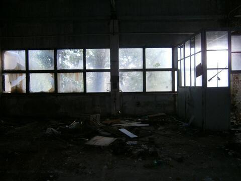 Аренда имущественного комплекса в Евпатории - Фото 3