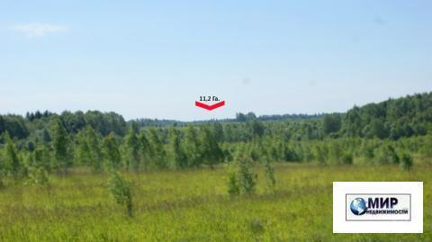 Земельное угодие 11,2 Га. на Новорижском шоссе. 125 км. от МКАД. кфх. - Фото 3