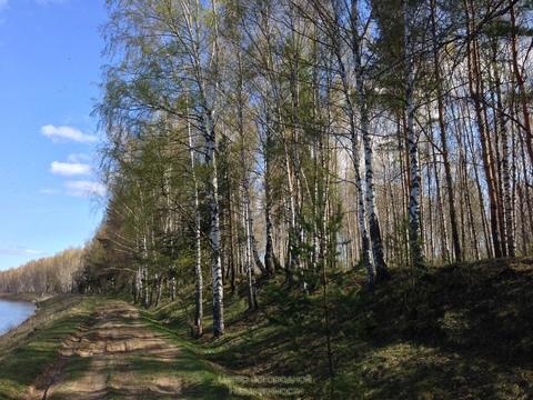 Участок, Осташковское ш, Ярославское ш, 12 км от МКАД, Жостово д. .