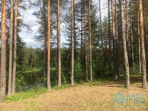 Продажа земельного участка 12.7 Га на берегу озера Ловецкое - Фото 5