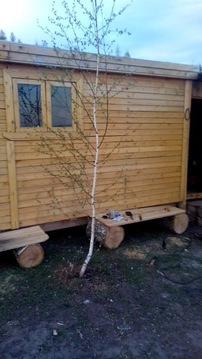 Земельный участок в Сторожиловском районе Рязанской области - Фото 5