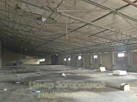 Складские помещения, Дмитровское ш, 63 км от МКАД, Дмитров, класс вне . - Фото 5