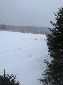Продам земельный участок 15 соток (ИЖС), д. Акатьево - Фото 3