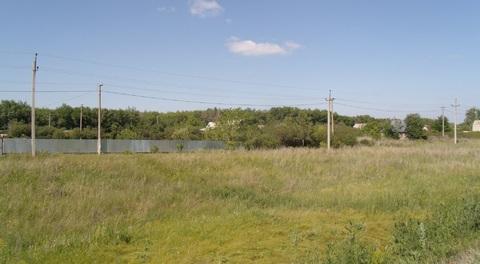 Зем участок 8 сот СНТ-Цветочное 1 линия Нежинское шоссе Аэропорт - Фото 5