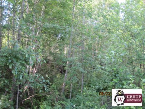 Продается земельный участок , возможна прописка в пос .Черкасово - Фото 2